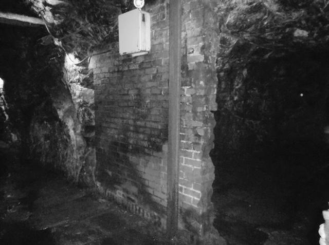 http://www.maltedbarley.org/Caves.jpg