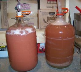 Strawberry_Wine_Cream_Ale.JPG
